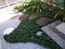 飛び石には根府川石を使用。