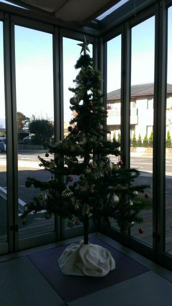 アトラスホーム 平塚 クリスマスツリー