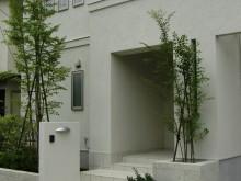 白を基調にした門まわり。白いお住まいに植栽が映えます。