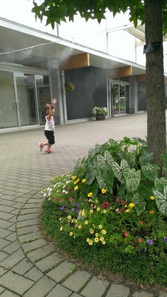 花菜ガーデンの入り口の植栽