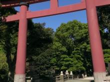 平塚 平塚八幡宮 入り口の鳥居