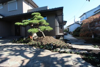 住宅に添って二つに分かれる和風のアプローチ。ジャワ鉄平石を使用
