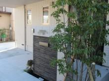 玄関前の目隠しとして常緑樹のソヨゴを植栽。緑が視線を優しくカットします。