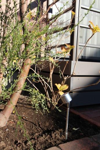 樹木を照らすのはタカショーのスイングアップライト