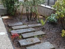 飛び石の坪庭 アオキ・ソヨゴ・シャクナゲなどの樹木を植栽