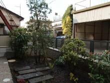アオキ・ソヨゴ・シャクナゲ・センリョウの植栽と自然石のアプローチ
