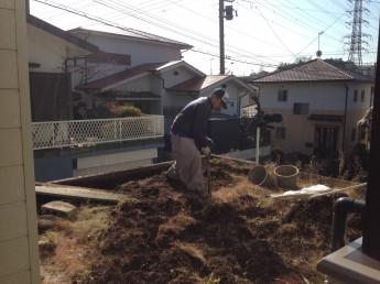 芝のお庭を自然石のテラスにリフォームするために植栽の撤去などをしていきます。