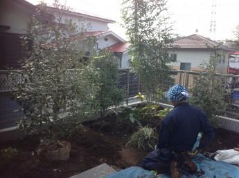 仕上げの植栽工事