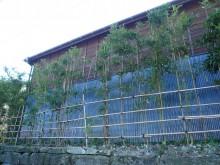 木製サイディングと波板(トタン)の和風の外壁塗装工事