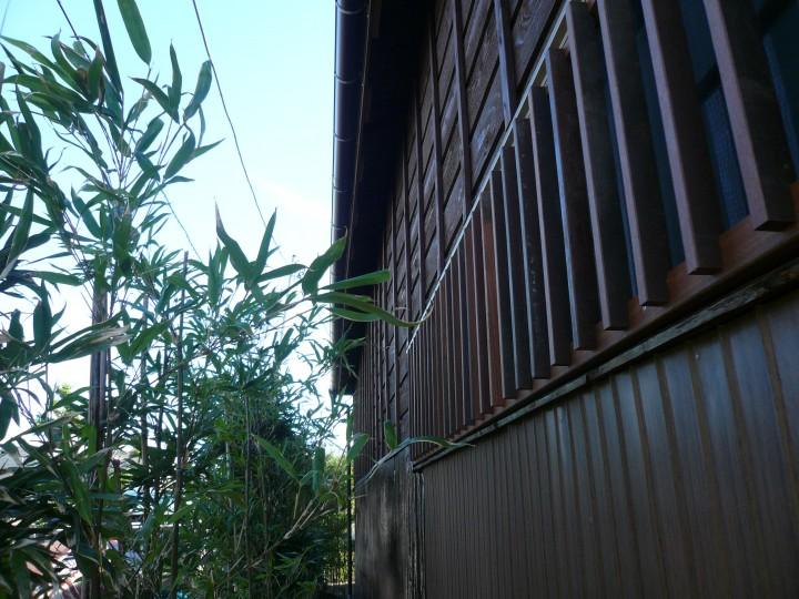 木製サイディング(杉板)と波板(トタン)の外壁