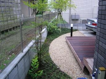 カーブを描いたタマリュウのラインが、真っ直ぐなデッキと対象的でモダンなお庭に
